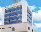 Отель Aguas Palace Hotel