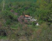 Отель Burazani
